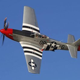 P-51 Red Nose